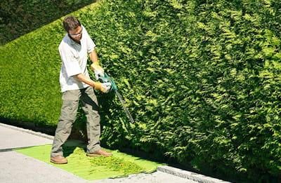 Entretien de jardin Bordeaux, travaux de jardinage pas cher...